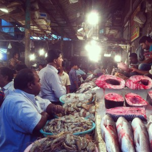 Fish market CR Park