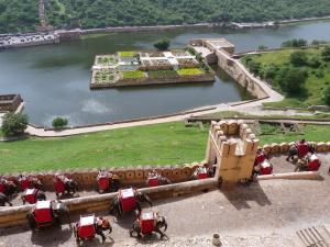 Cyclin Jaipur